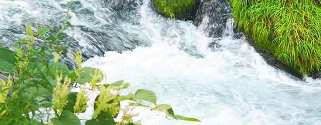 多点温度検層、流向流速などの地下水調査の必要性